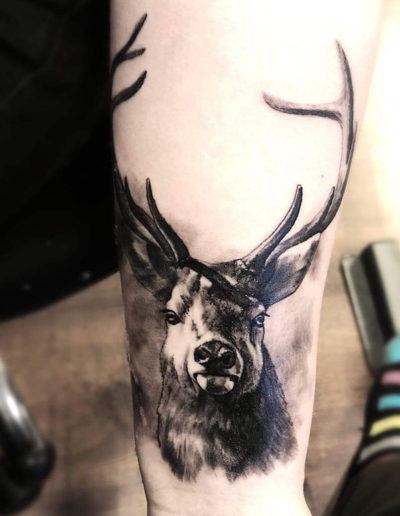 rådyr dådyr tatovering